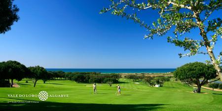 VDL golf